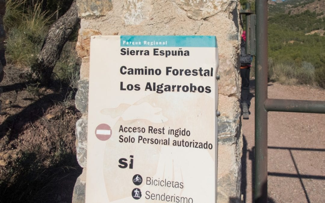 Casa Forestal Morti 8 November 2019